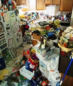 Hoarding turns homes into dumps often littered with rotten, mouldy and rodent infested waste.